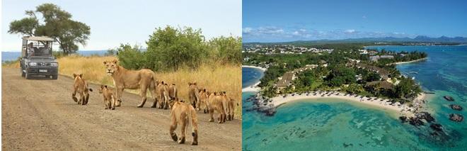 ALICE & DAMIANO Sudafrica + Mauritius